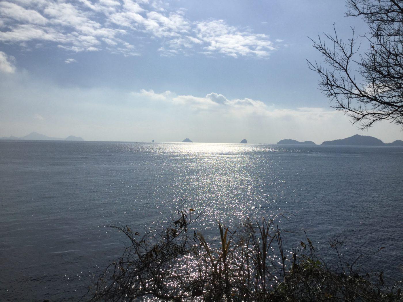 イカハゲ深夜便 vol.11